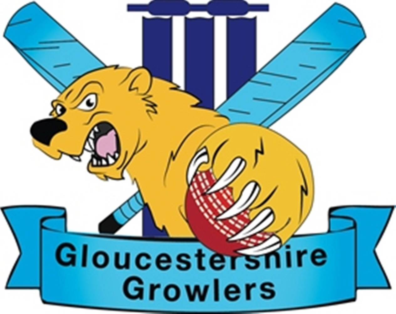 Growlers have to settle for runners-up spot after T20 final defeat