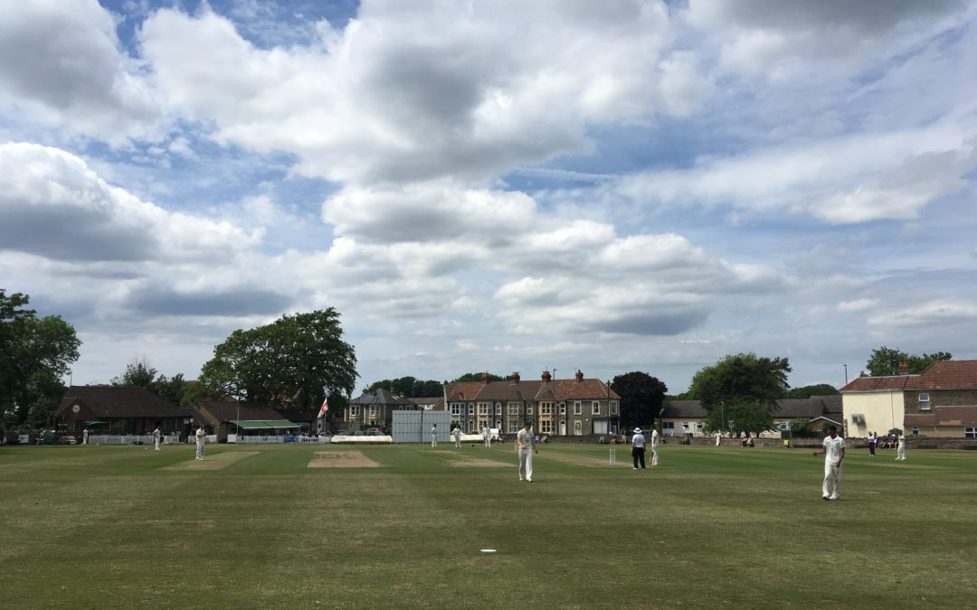 League cricket is back! Players raring to go as recreational game returns