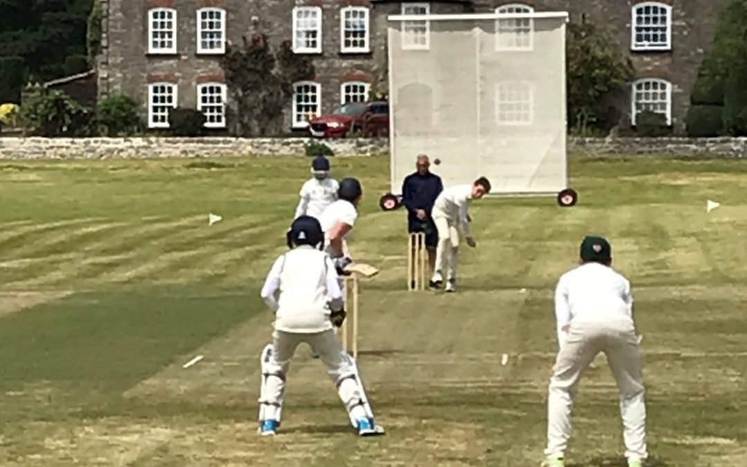 District cricket round-up